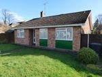 Thumbnail for sale in Curlew Green, Lowestoft