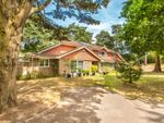 Thumbnail to rent in Ringwood Road, St Ives, Ringwood