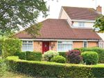 Thumbnail for sale in Pheasant Close, Swindon