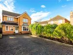 Thumbnail to rent in Smithy Close, Holybourne, Alton, Hampshire