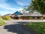 Thumbnail for sale in Beechwood Park, Beechwood Park, Stoneyford, Narberth, Pembrokeshire