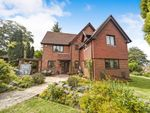 Thumbnail to rent in Overhill Road, Purley, Surrey