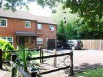 Thumbnail to rent in Woking, Surrey, .