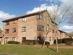 Thumbnail to rent in Godmanston Close, Poole