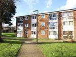 Thumbnail to rent in Chalfont Close, Hemel Hempstead