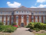 Thumbnail to rent in Walsingham Close, Hatfield