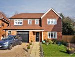 Thumbnail for sale in Maple Tree Close, Blandford Forum