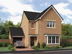 "Thumbnail to rent in ""The Esk"" At Ladyburn Way, Hadston, Morpeth NE65, Hadston,"