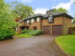 Thumbnail to rent in The Burlings, Ascot