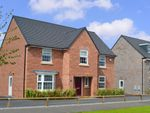"Thumbnail to rent in ""Winstone"" at Michaels Drive, Corby"
