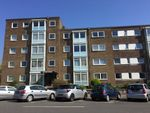 Thumbnail to rent in New Church Road, Hove, East Sussex