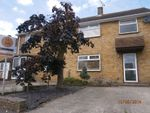 Thumbnail to rent in Spacious 3 Bed Family Home, Superb Garden, Pets Could Be Considered.