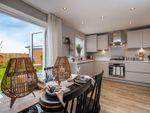 "Thumbnail to rent in ""Archford"" at Dunstall Lane, Hopwas, Tamworth"