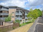 Thumbnail to rent in Mcquades Court, York