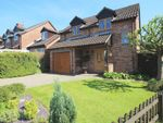 Thumbnail for sale in Kestrel Close, Bishops Waltham