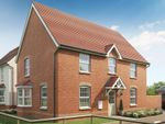 "Thumbnail to rent in ""Cornell"" at Brogdale Road, Ospringe, Faversham"