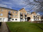 Thumbnail to rent in Ted Bates Court, The Dell, Southampton