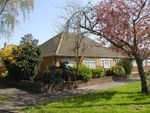 Thumbnail for sale in Dudley Avenue, Cheshunt