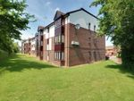 Thumbnail for sale in Talus Close, Purfleet