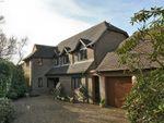 Thumbnail for sale in Blackbush Road, Milford On Sea, Lymington, Hampshire
