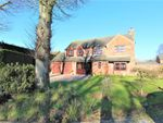 Thumbnail for sale in Bramley Orchard, Bushby, Leicestershire