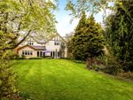 Thumbnail for sale in Cricket Green Lane, Hartley Wintney, Hook, Hampshire