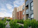 Thumbnail to rent in Trimbush Way, Market Harborough