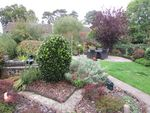 Thumbnail to rent in Ladys Gift Road, Southborough, Kent