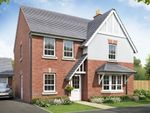 """Thumbnail to rent in """"Cambridge"""" at Beggars Lane, New Lubbesthorpe"""