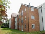 Thumbnail to rent in Weston House, Eastfield, Northampton