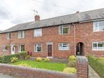 Thumbnail to rent in Lilac Street, Hollingwood, Chesterfield