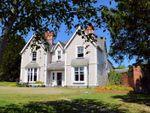 Thumbnail for sale in Glanhelyg, Llechryd, Cardigan, Ceredigion.