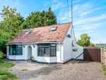 Thumbnail to rent in Dittons Road, Polegate