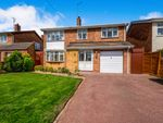 Thumbnail to rent in Greenfield Avenue, Abington, Northampton