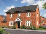 "Thumbnail to rent in ""The Spruce "" at Melton Road, Nottinghamshire, Edwalton"