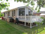 Thumbnail for sale in Grange Lodge Park, Straight Road, East Bergholt