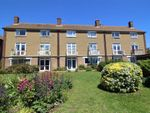Thumbnail to rent in The Mount, Hove, East Sussex