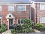 Thumbnail for sale in Dandelion Villas, Northampton