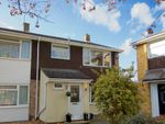 Thumbnail for sale in Meon Close, Old Springfield, Chelmsford