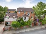 Thumbnail for sale in Hawthorn Close, Newton Abbot