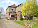 Thumbnail to rent in Brodrick Avenue, Alverstoke