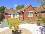 Thumbnail to rent in Gordon Avenue West, Bognor Regis