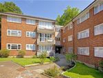 Thumbnail to rent in Springbank, London