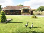 Thumbnail for sale in Windsor Road, Bowers Gifford, Basildon