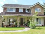 Thumbnail for sale in Widley Gardens, Widley, Waterlooville