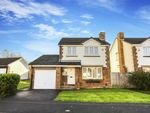 Thumbnail to rent in Meadowfield, Whitley Bay, Tyne And Wear
