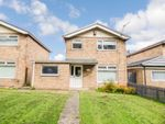 Thumbnail for sale in Dereham Way, North Shields