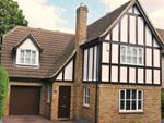 Thumbnail to rent in Lancaster Way, Kate Reed Wood, West Malling, Kent
