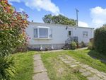 Thumbnail to rent in Goldenbank, Falmouth, Cornwall