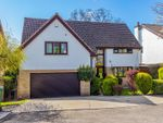 Thumbnail for sale in The Paddock, Lisvane, Cardiff